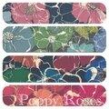 Poppy roses