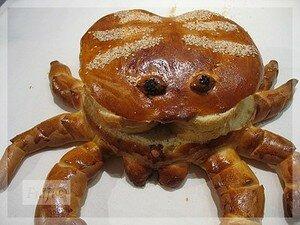 crabe25