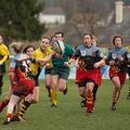 66IMG_0220T