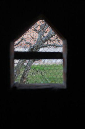 11-11-11 Par la lucarne