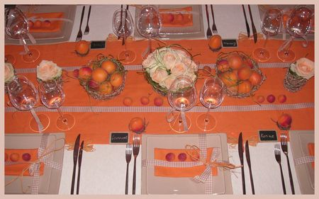 2009_07_07_table_abricots14
