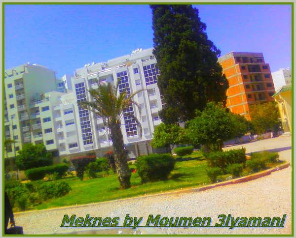 Hamria Vers BMO Meknes Ville nouvelle