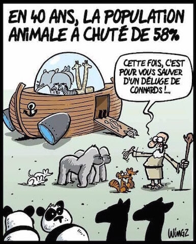 population animale