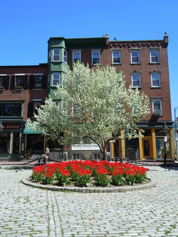 The Freedom trail tour (14)