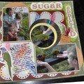 Sugar addicted (publié le 29/01/07)