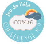macaron-jeu-ete-2014-challenge-3