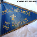 Fanion camelots angers