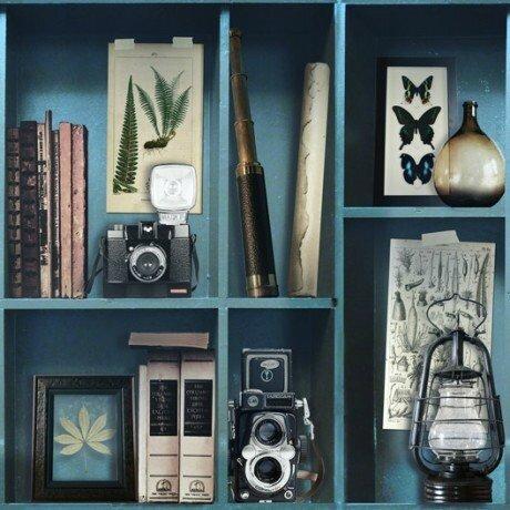 papier-peint-intisse-cabinet-de-curiosite-bleu