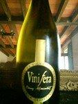 vinifera_05