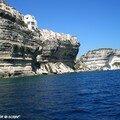 Les fameuses falaises de Bonifacio