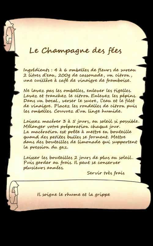 champagne des fées 00_modifié-1