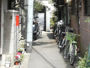 Canalblog_Rues_Plantes17_Yanaka_Ginza_D_tail01