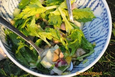 salade_celeri_1