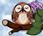 owl_picture