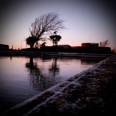 arbre_et_eau_3
