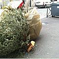 En 2012, alfortville ne recycle toujours pas .... les sapins de noël!