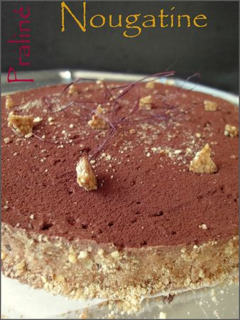 Entremet_choco_pralin__et_chocolat_noir_aux__clats_de_nougatine1