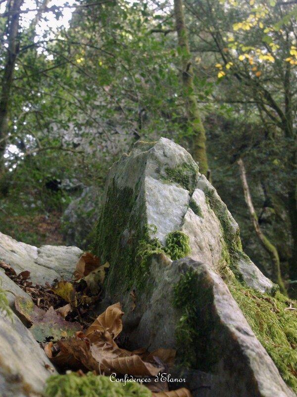 En bas du rocher au corbeau