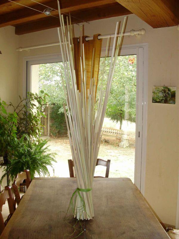 herbe de la pampa le jardin de memere herisson. Black Bedroom Furniture Sets. Home Design Ideas