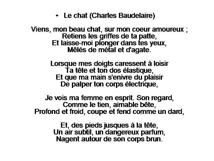 RONDE DES CHATS (91)