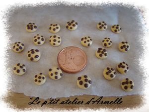 cookies_fimo_cadre