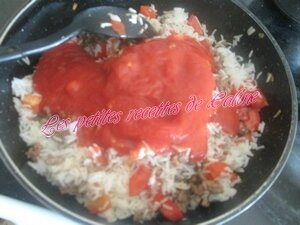 Wok de riz bolognaise27
