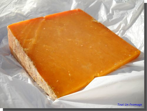 Red Leicester (Angleterre)