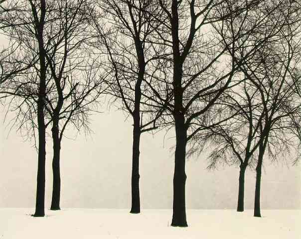 79. Harry Callahan, Chicago, 1950.