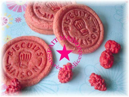 biscuitsmaison8bis