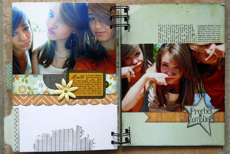 mini album friends 30