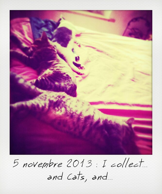 5-I collect1_instant