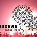 Edogawa hanabi 2010