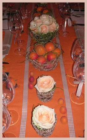2009_07_07_table_abricots20