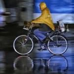 Chine piste cyclable (25) - copie