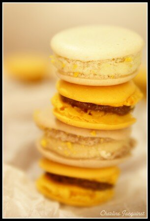 Marie_Laure_Macarons5