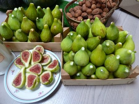 10-figues (2)