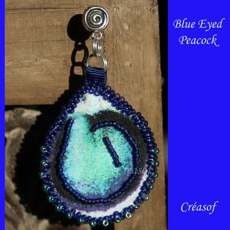BO blue eyed peacock 2