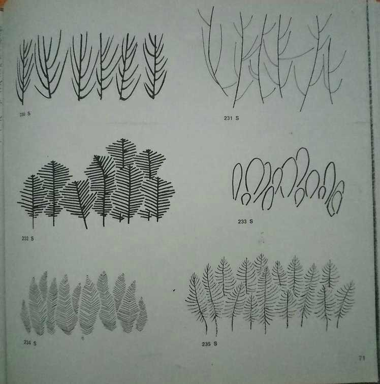 arbregraphisme03