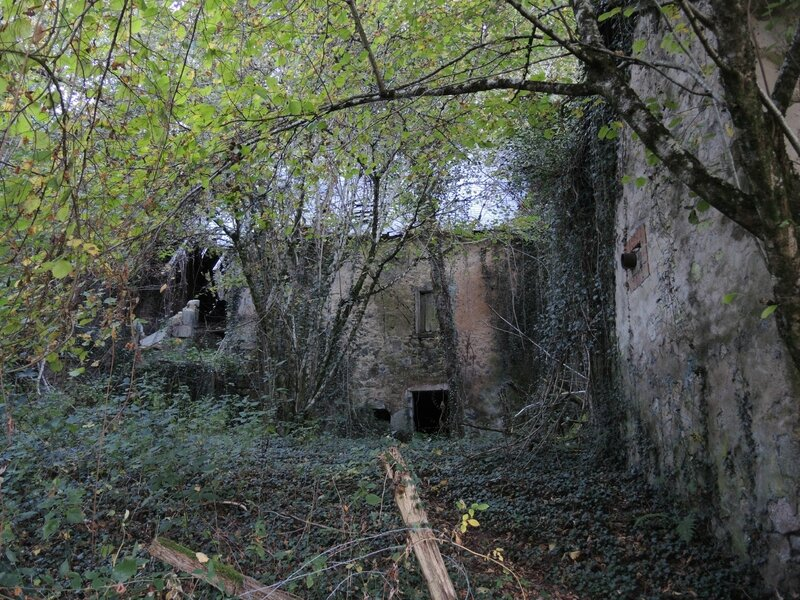 Maison Neuve, ruine (58)
