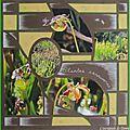 Plantes carnivores 001