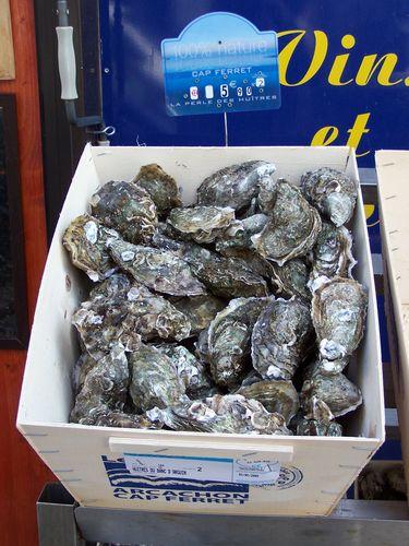 Clin d'oeil-huîtres