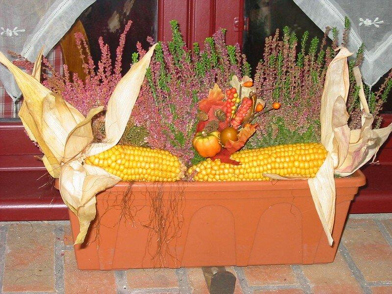 Jardini re d 39 automne clacancha for Jardiniere d automne