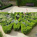 jardin papillon1