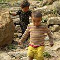 Nepal 208 ti morveux nepalais
