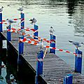 annecy 7