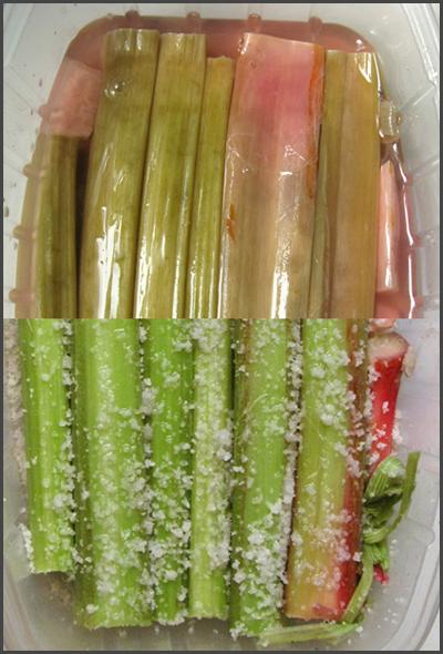 rhubarbe salée4