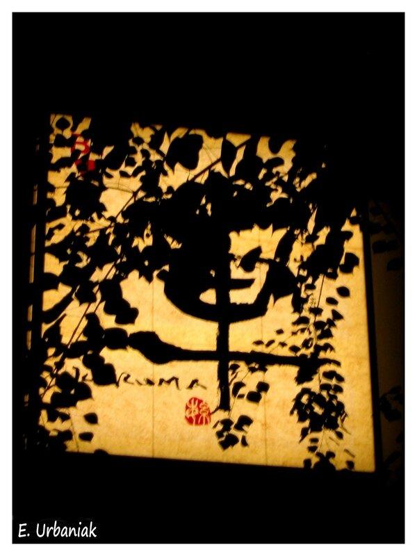 projection de nuit Japon octobre 2006