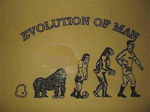 rugby_evolution