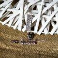 Boucles d'oreilles argent/perles en verre millefiori