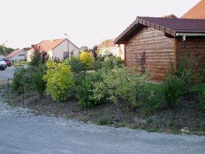 Vegetation (57)